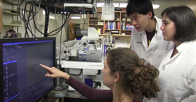 Video of professor and students studying soft matter physics
